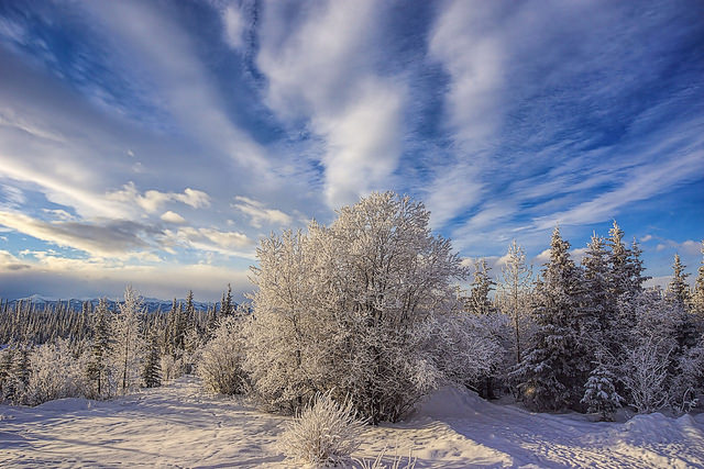 Photo Credit: Snowshoe Photography